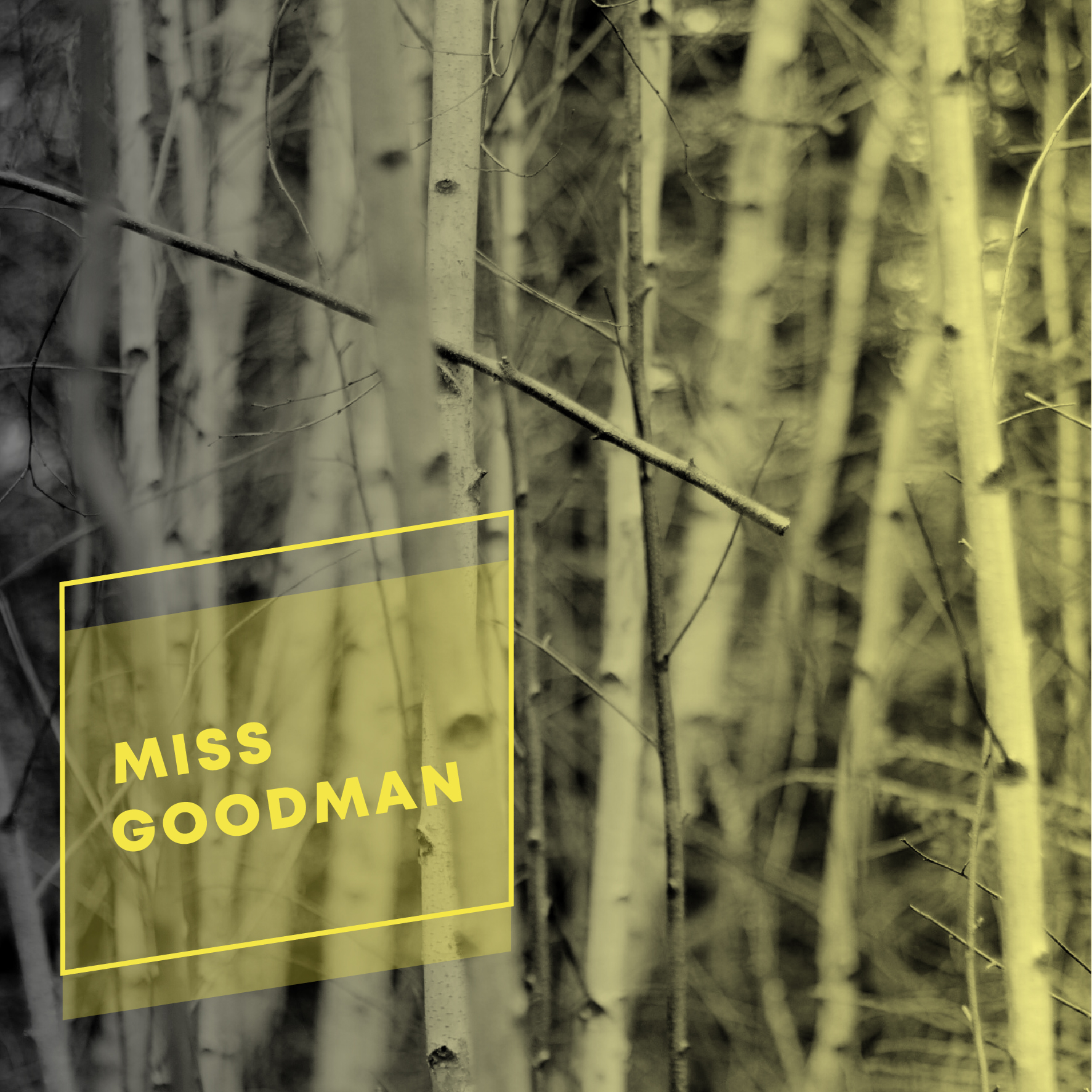 MISS GOODMAN